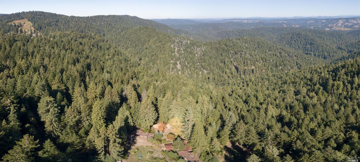 an aerial shot of the forests around the family home for sale, Philo, CA