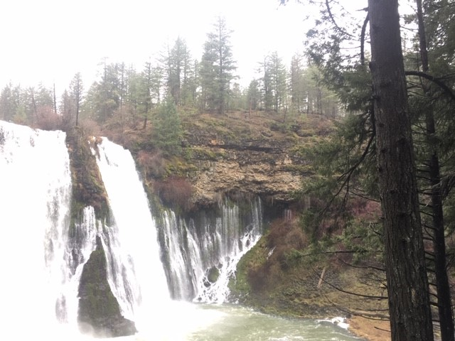 Burney Falls.