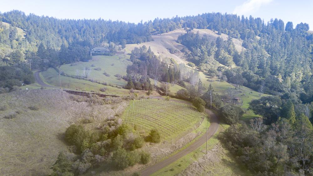 Vineyard, meadows, redwood trees, on 21 acres in Anderson Valley.