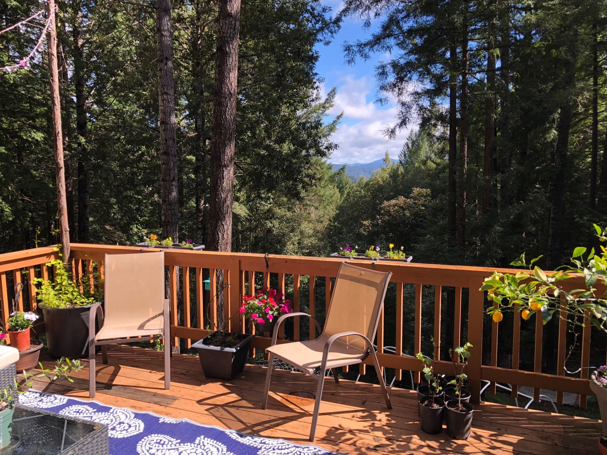 Views from a deck on a house for sale in Philo, CA