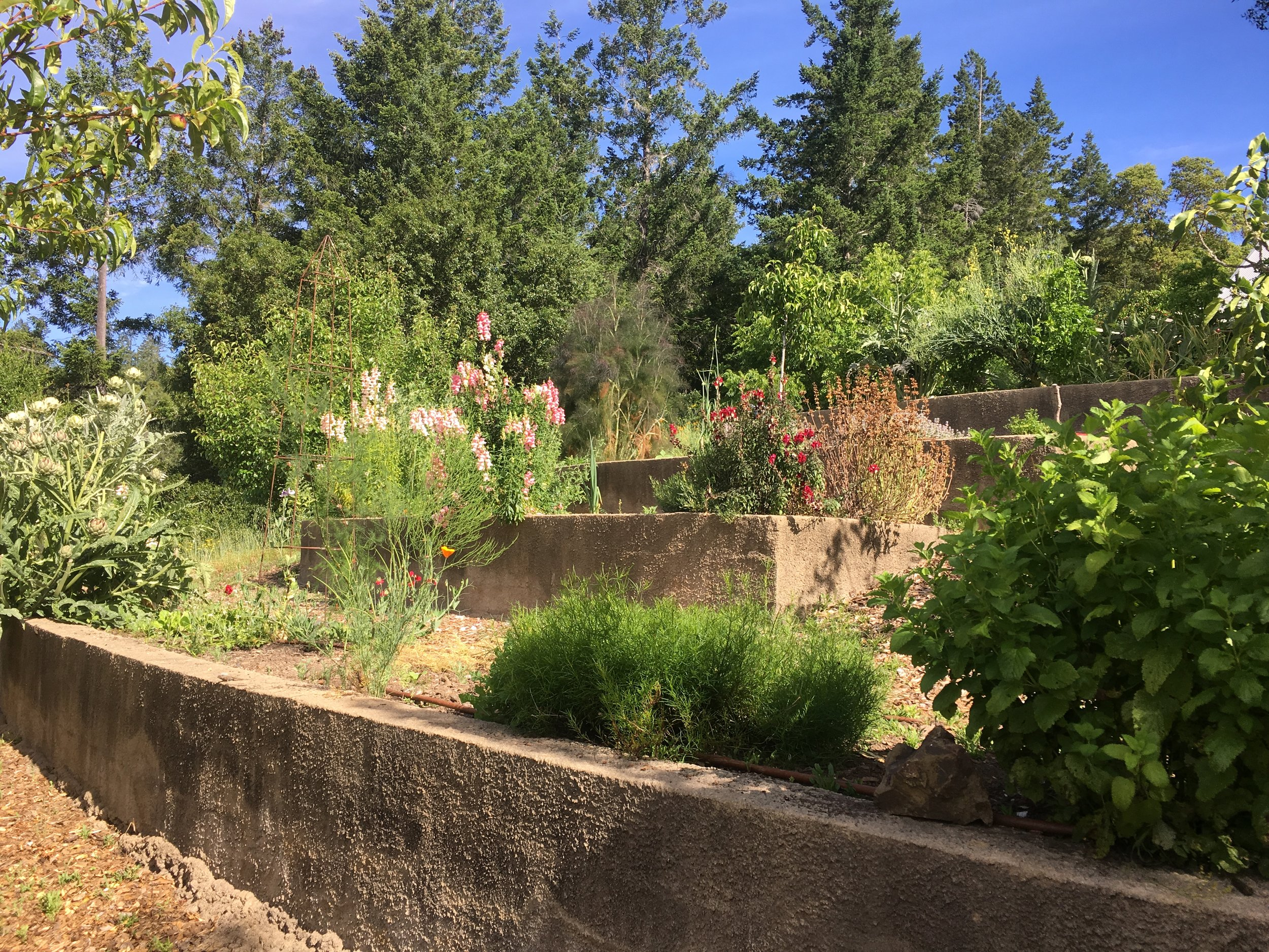 Terraced garden in a home for sale in Philo CA