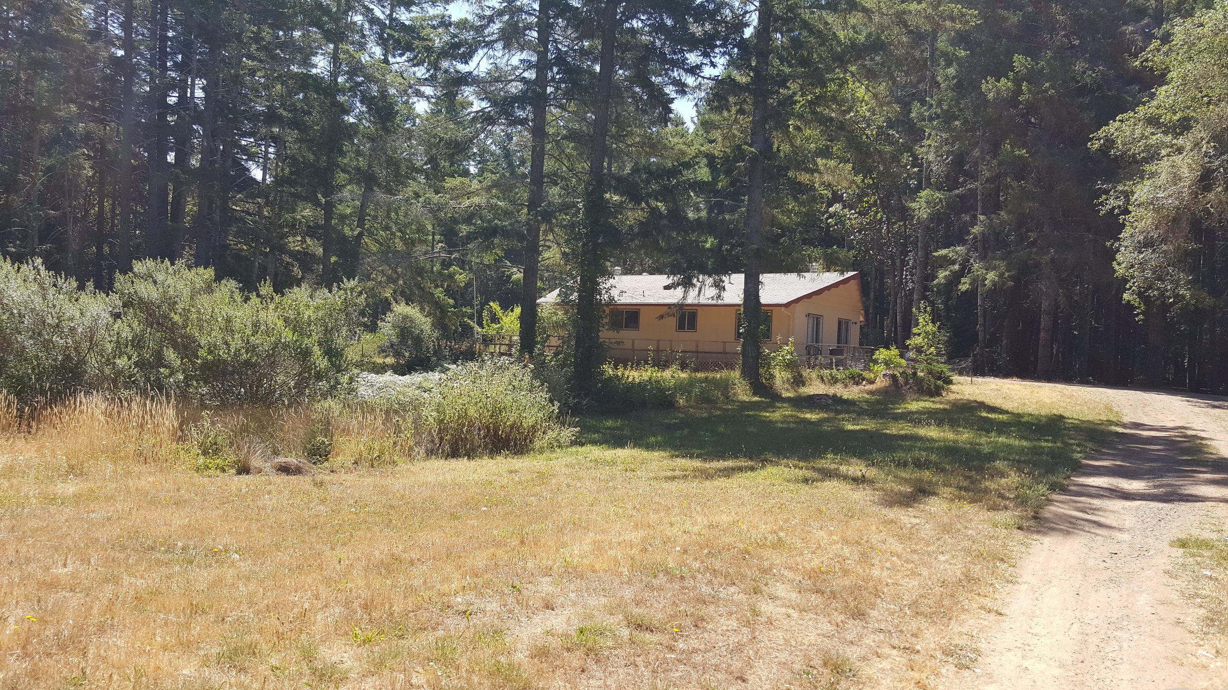 Home on 10+/- acres