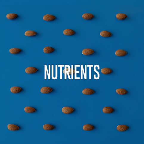 nutrients-1.png