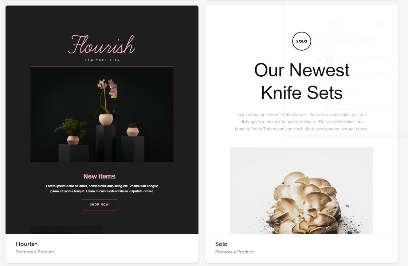 Squarespace Campaign offers beautiful, responsive templates.