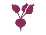 MFMF-Logo-beet.jpg