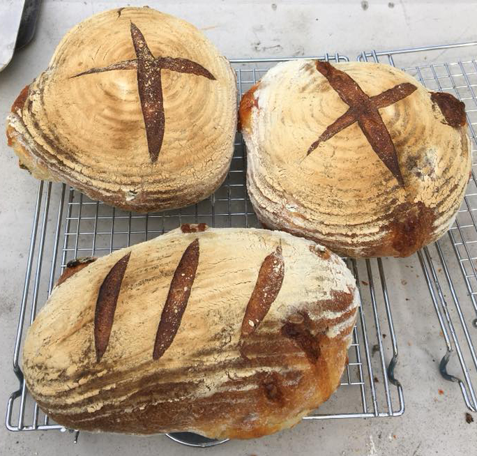 Breads baked in the Cobb, like snowflakes, no two are the same