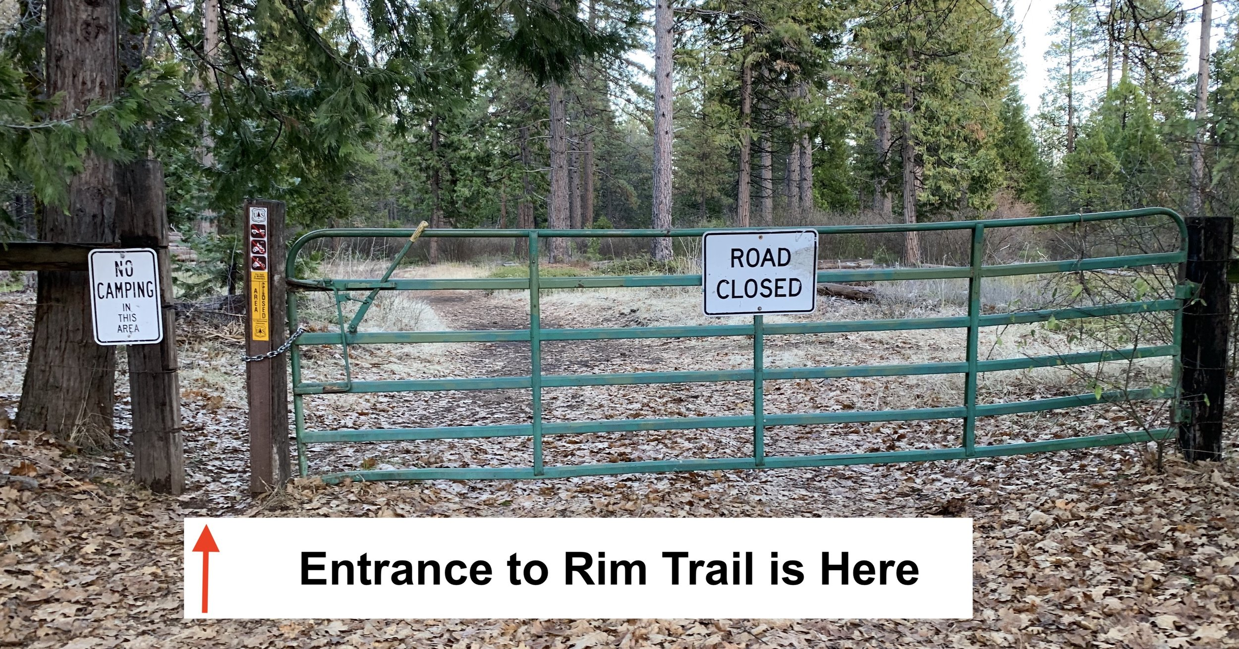 Pinecone Hollow's Immediate Area    Part 1: Access to Rim Trail:  Access to the The Rim Trail is right up the street from Pinecone Hollow. Literally go right out of our driveway and walk to the top of the road (about 3 minutes). Thereat, look for the forestry road and enter.  See part 2…