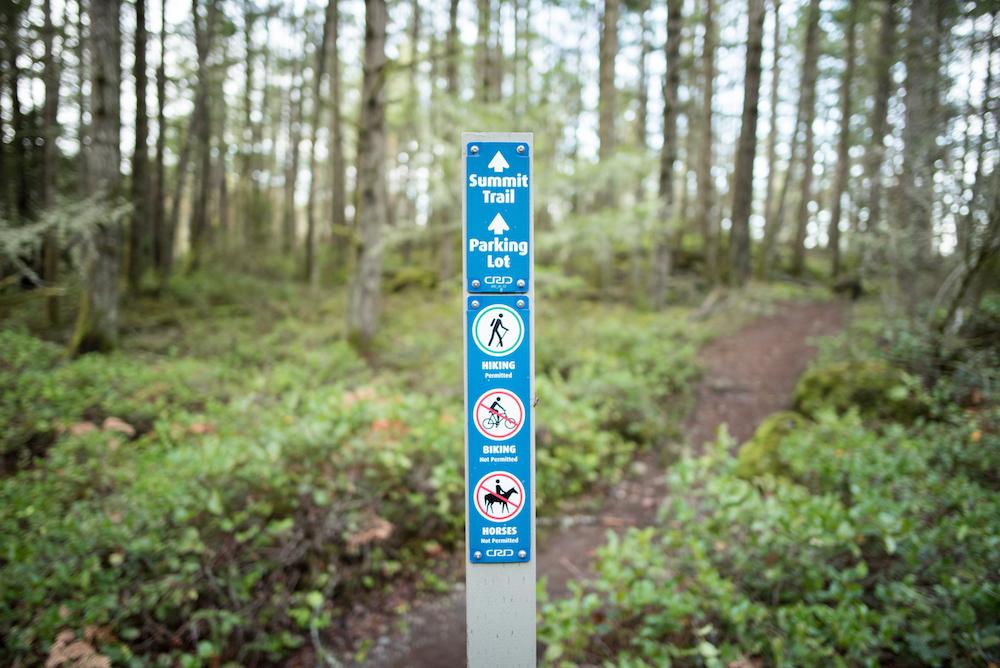 mount-wells--wwwdanielbaylisca-47_46828519321_o.jpg