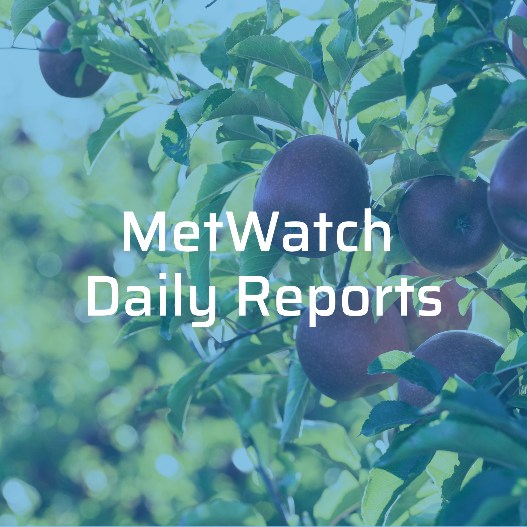 Receive Daily Weather Reports & Data to Make Better Growing Decisions. -