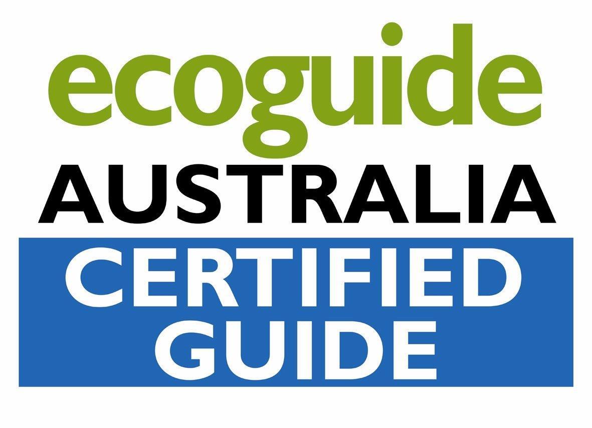 EcoGuide Logo.jpg
