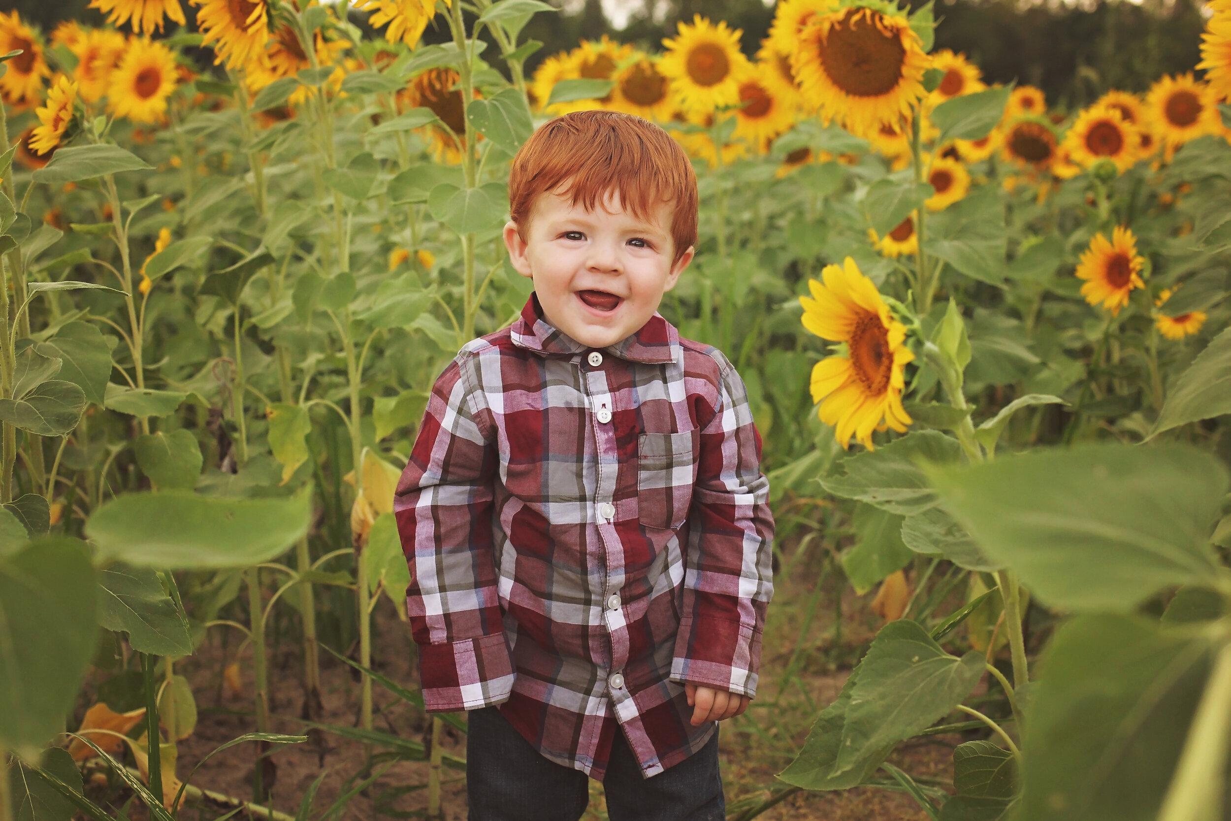 southern-illinois-photographer-benton-sunflower-field-toddler-boy-happiness.jpg