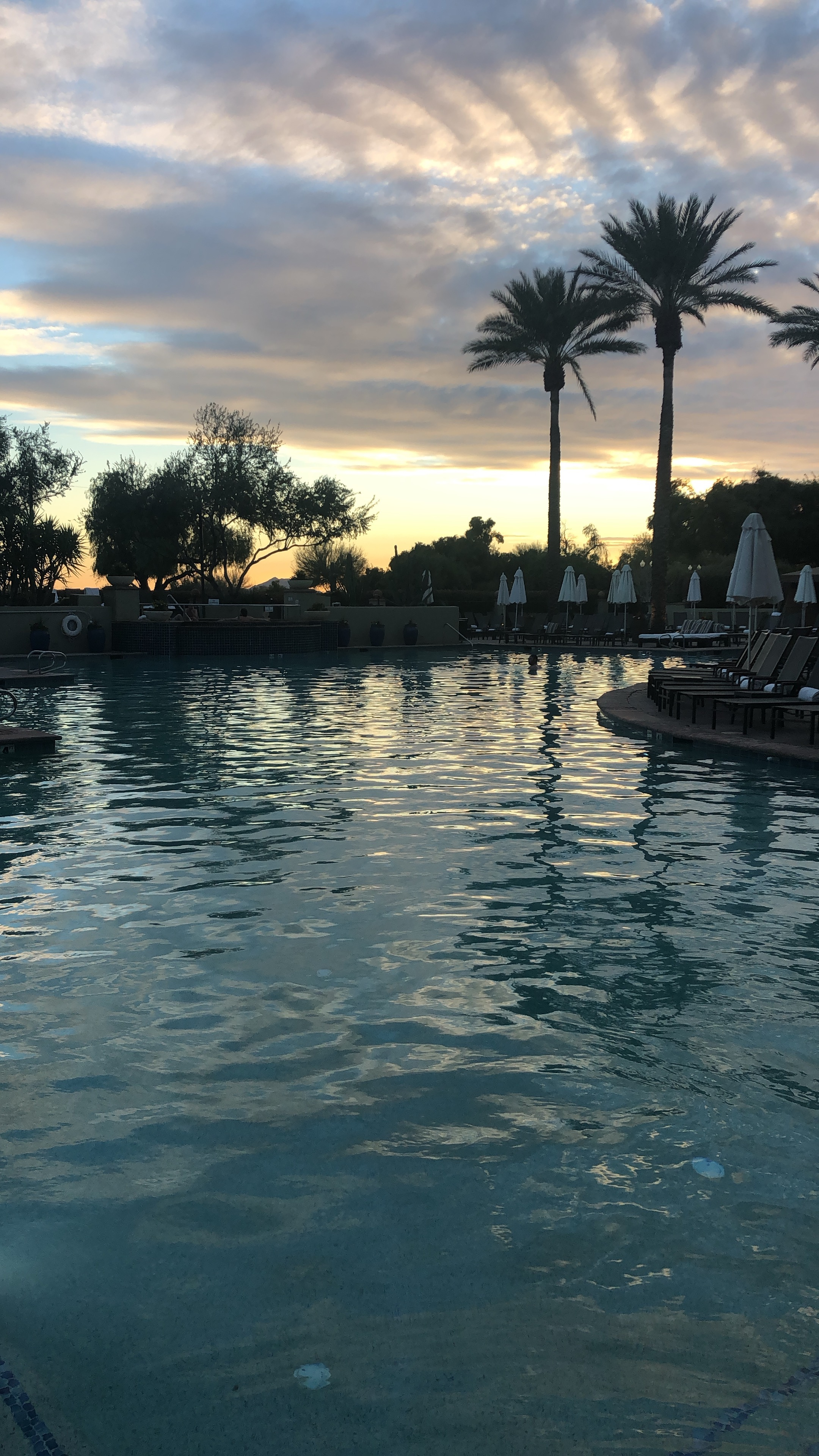 the prettiest view from the pool at the Fairmont Scottsdale Princess