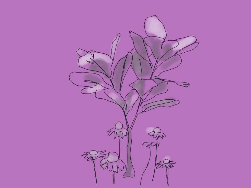 Plant & Flowers