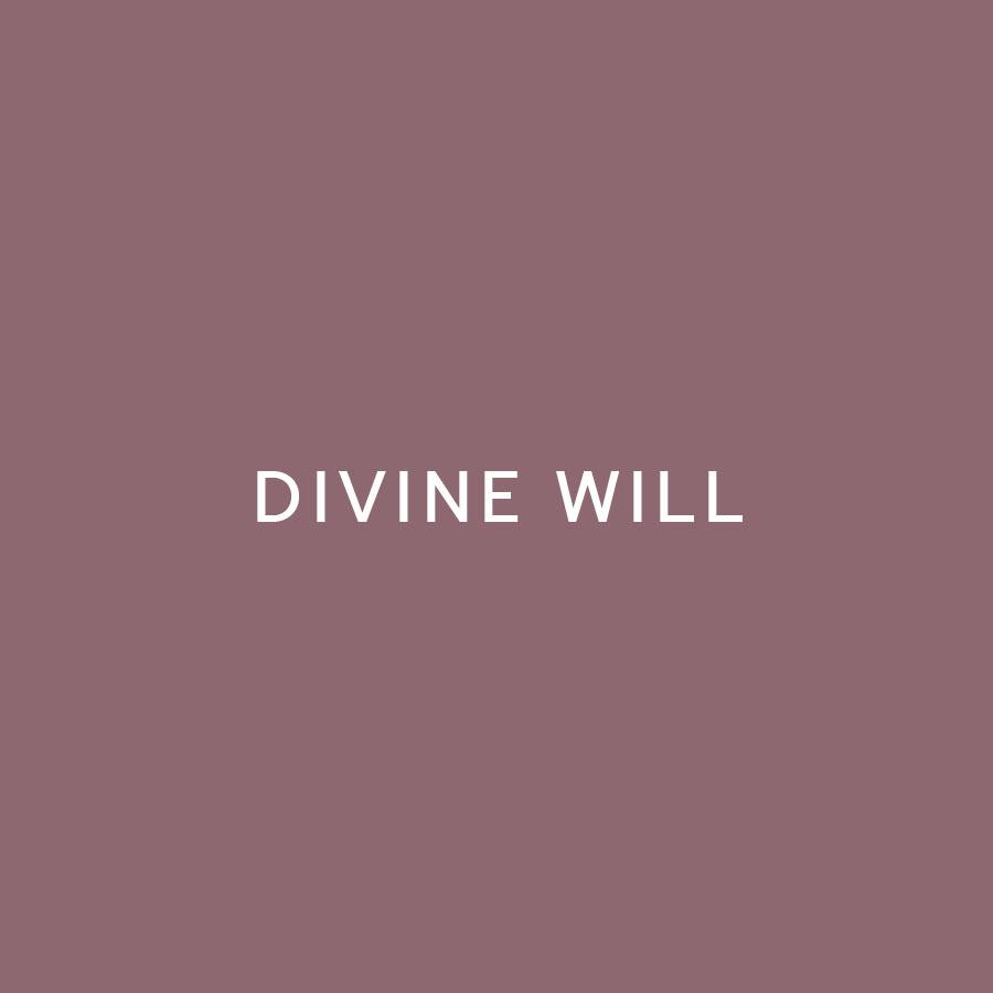 divine-will.jpg