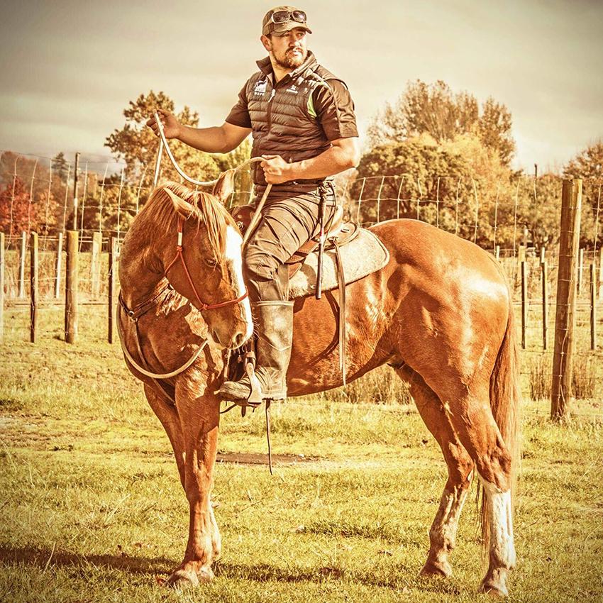 HORSE STARTING NATIONWIDE -