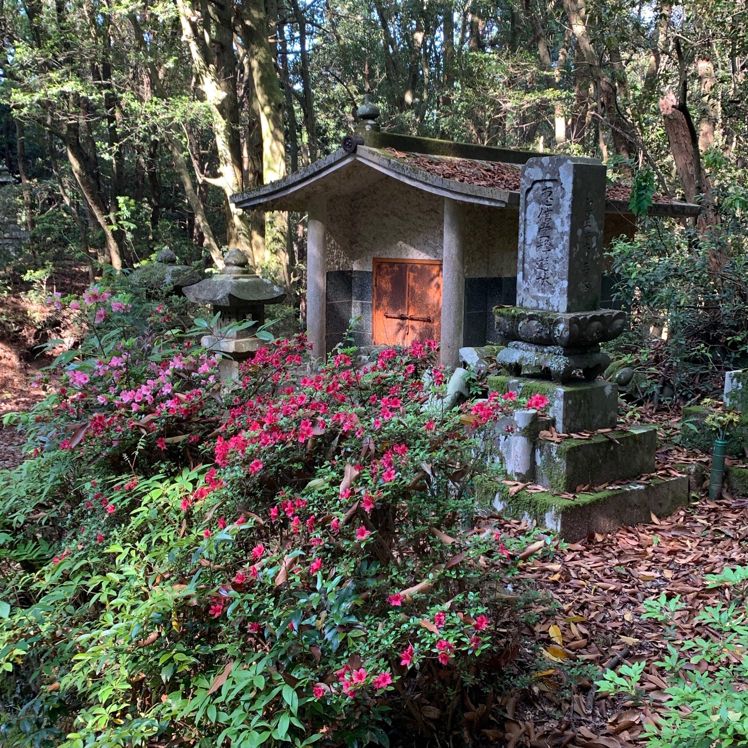 Day4_shrine_in_woods.jpeg