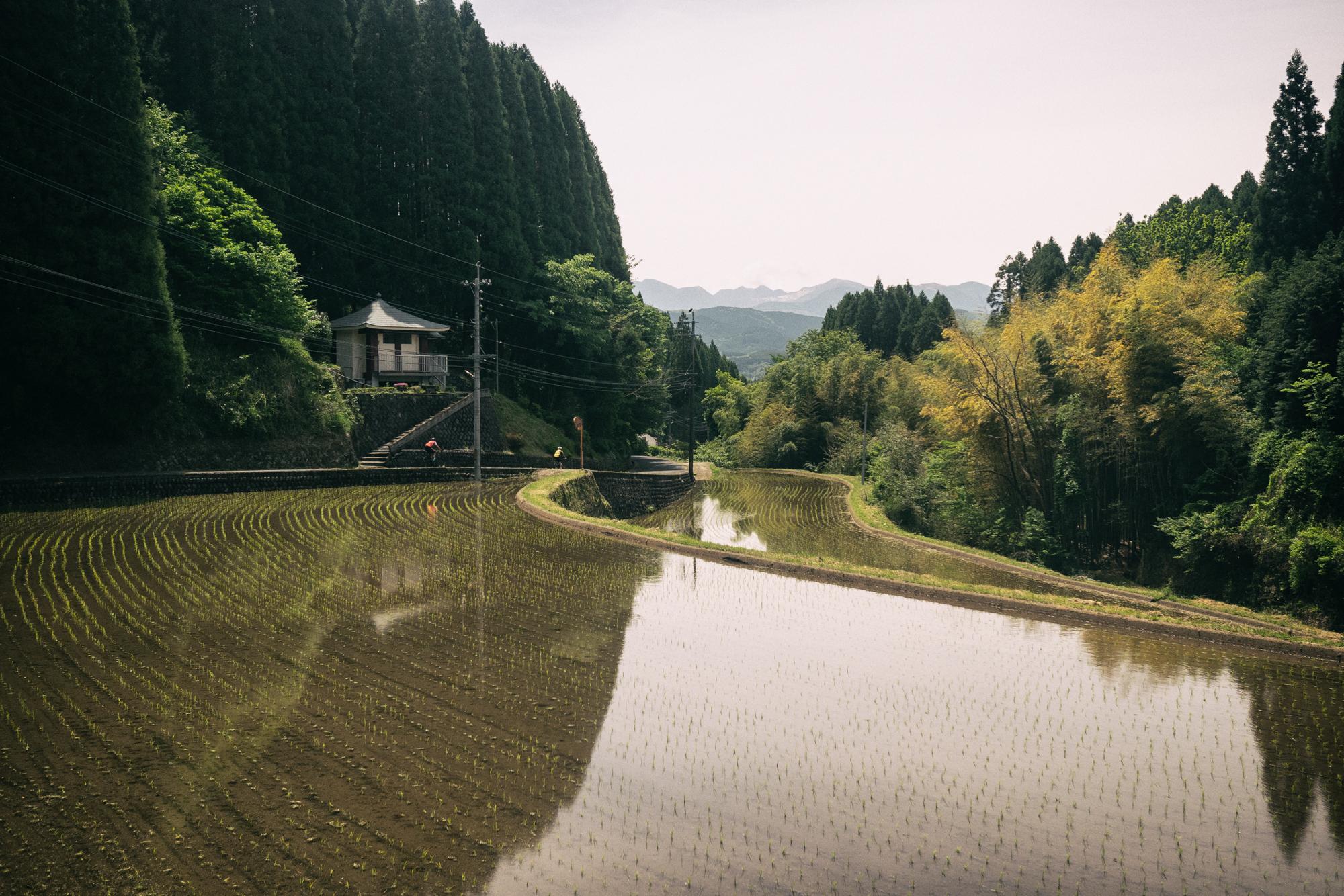 Photo: Atsushi Tanno