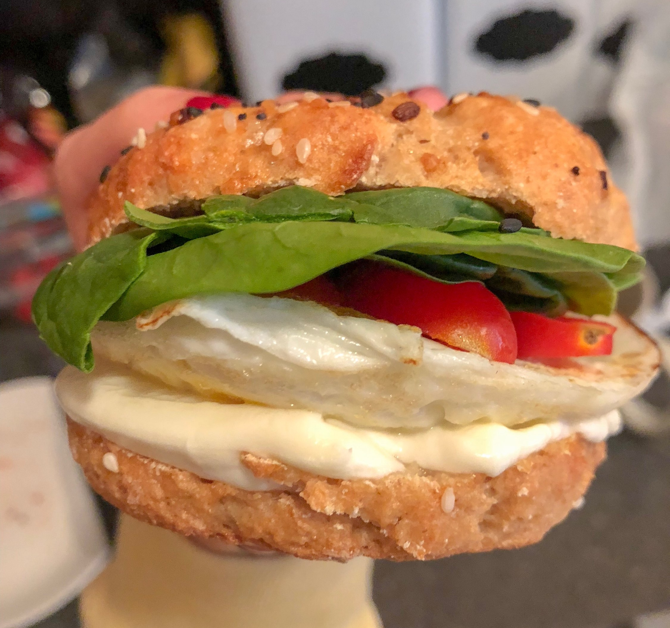 Pictured above: my breakfast sandwich- over medium egg, spinach, tomato, & mozzarella, sandwiched between a homemade everything bagel