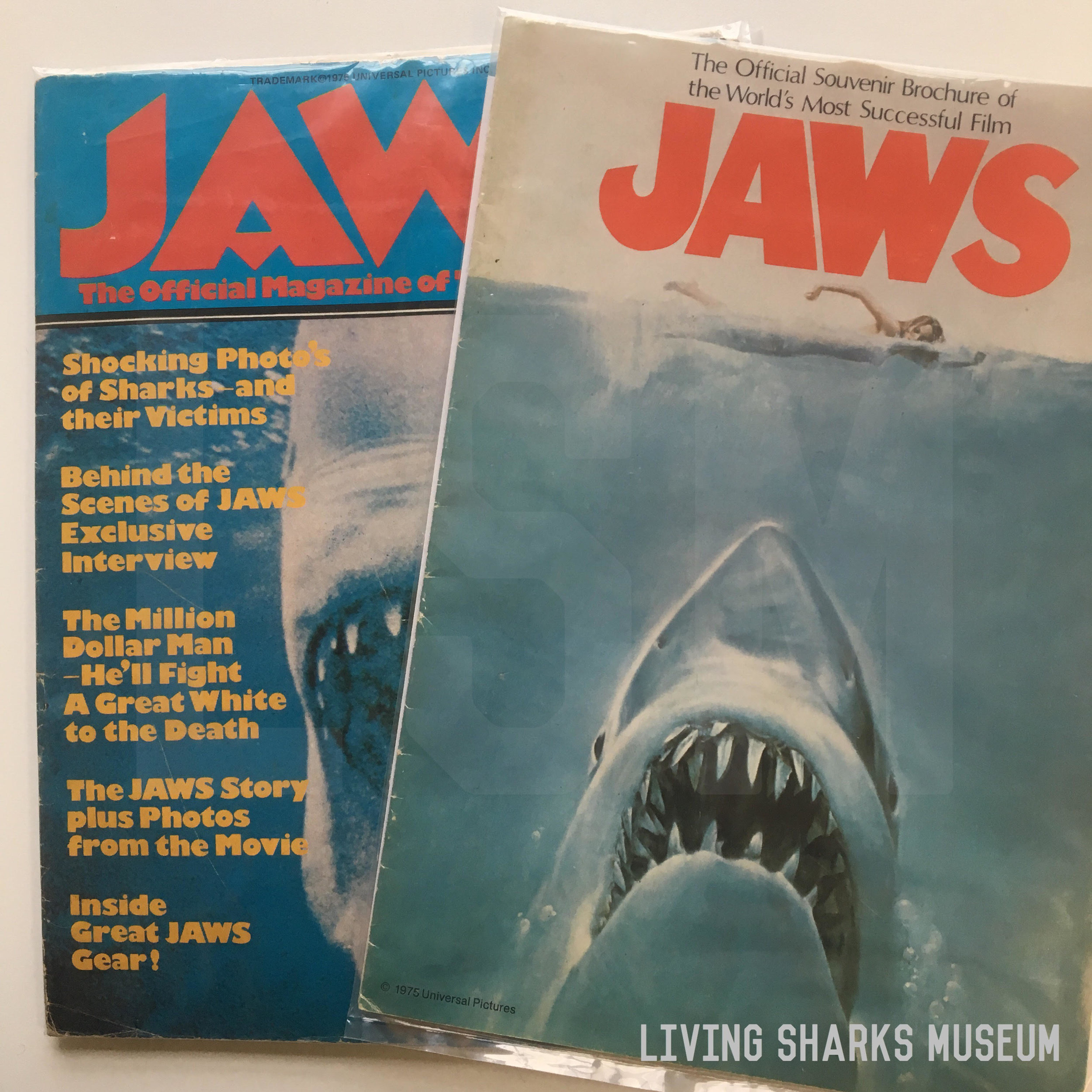 JAWS PERIODICALS - Marketing Jaws the way other major films were marketed was an afterthought. The expectation of Jaws 1975 success was low, and when it hit the ground running the studio cashed in on all kinds of merchandise and collectables.Jaws Souvenir Brochure and official movie magazines were published in many countries, though they are extremely hard to come across today!_____________________JAWS SOUVENIR BROCHURE 1975JAWS OFFICIAL MAGAZINE OF THE FILM 1975Private Collection - Keith M. Cowley