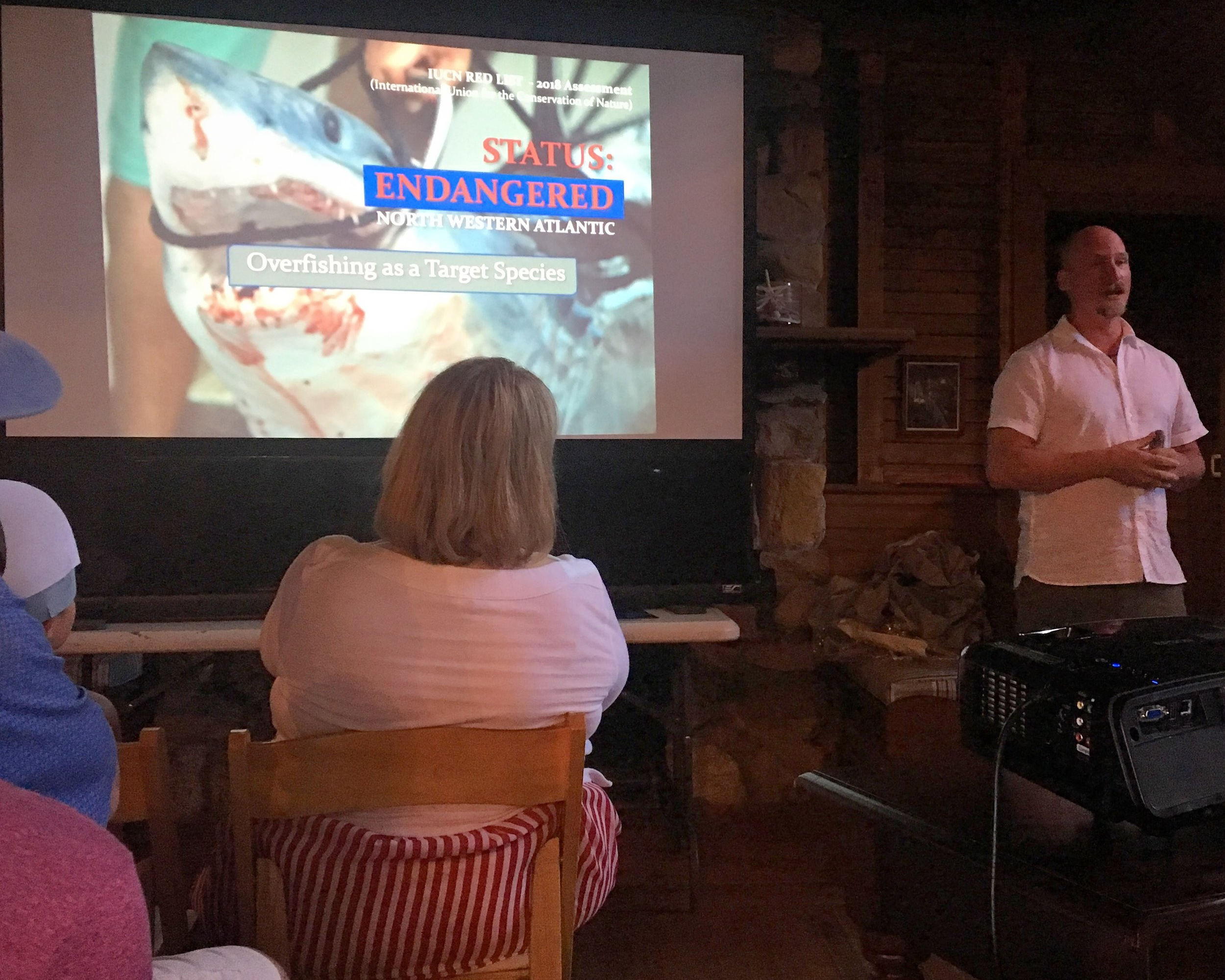 Shark Conservation Lecture at Bruce Museum
