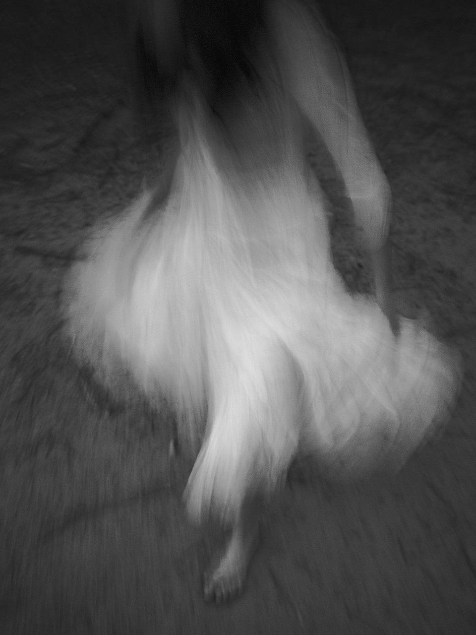 Ghost Dancer, 2016. Donna Garcia.