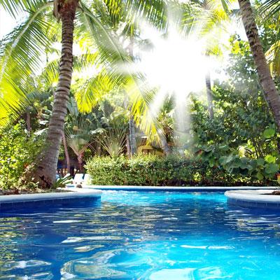 pool-tropical.jpg