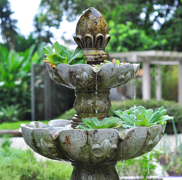 Water-Smart Gardening and Xeroscaping