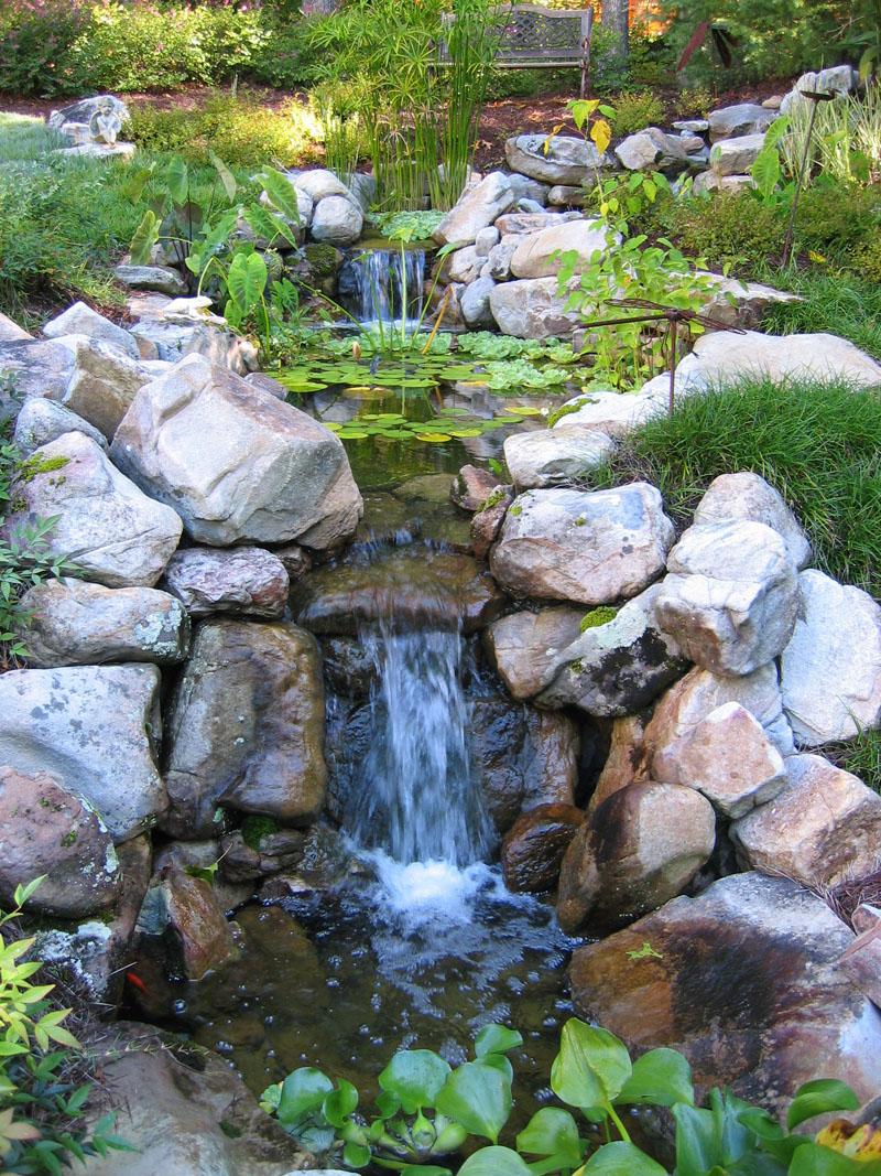 Backyard Water Feature.jpg
