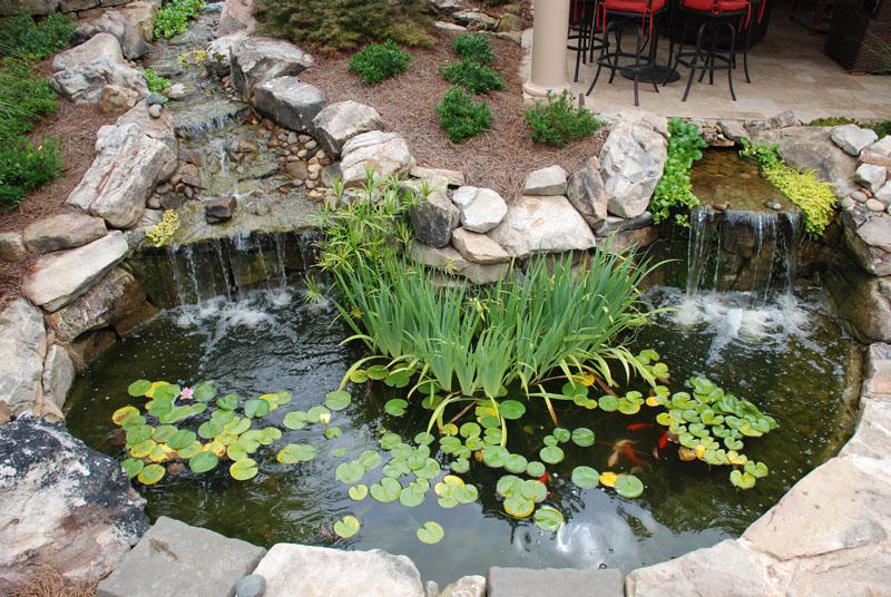 Backyard Pond Water Feature.jpg