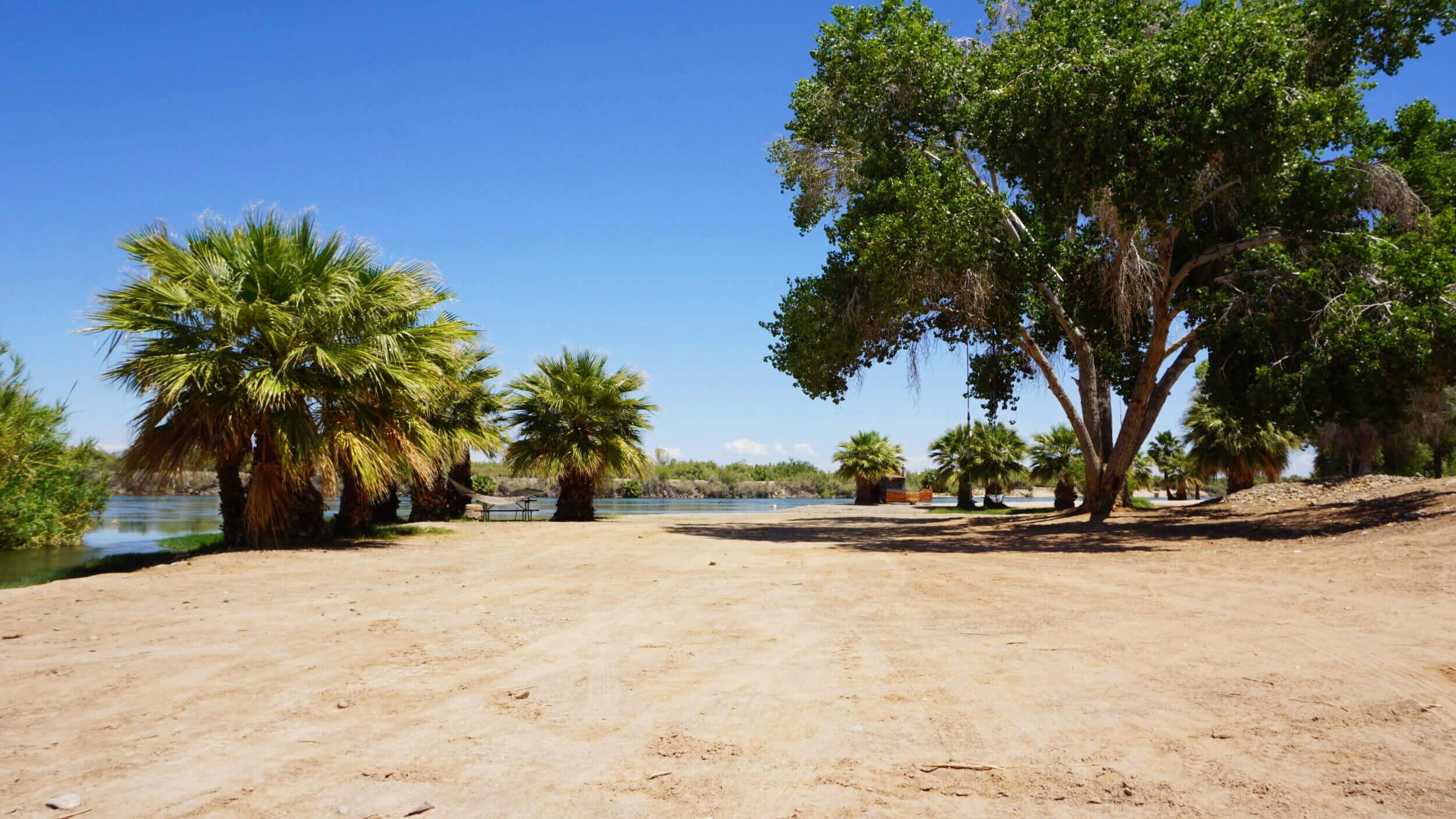 beach-arizona-oasis.jpg