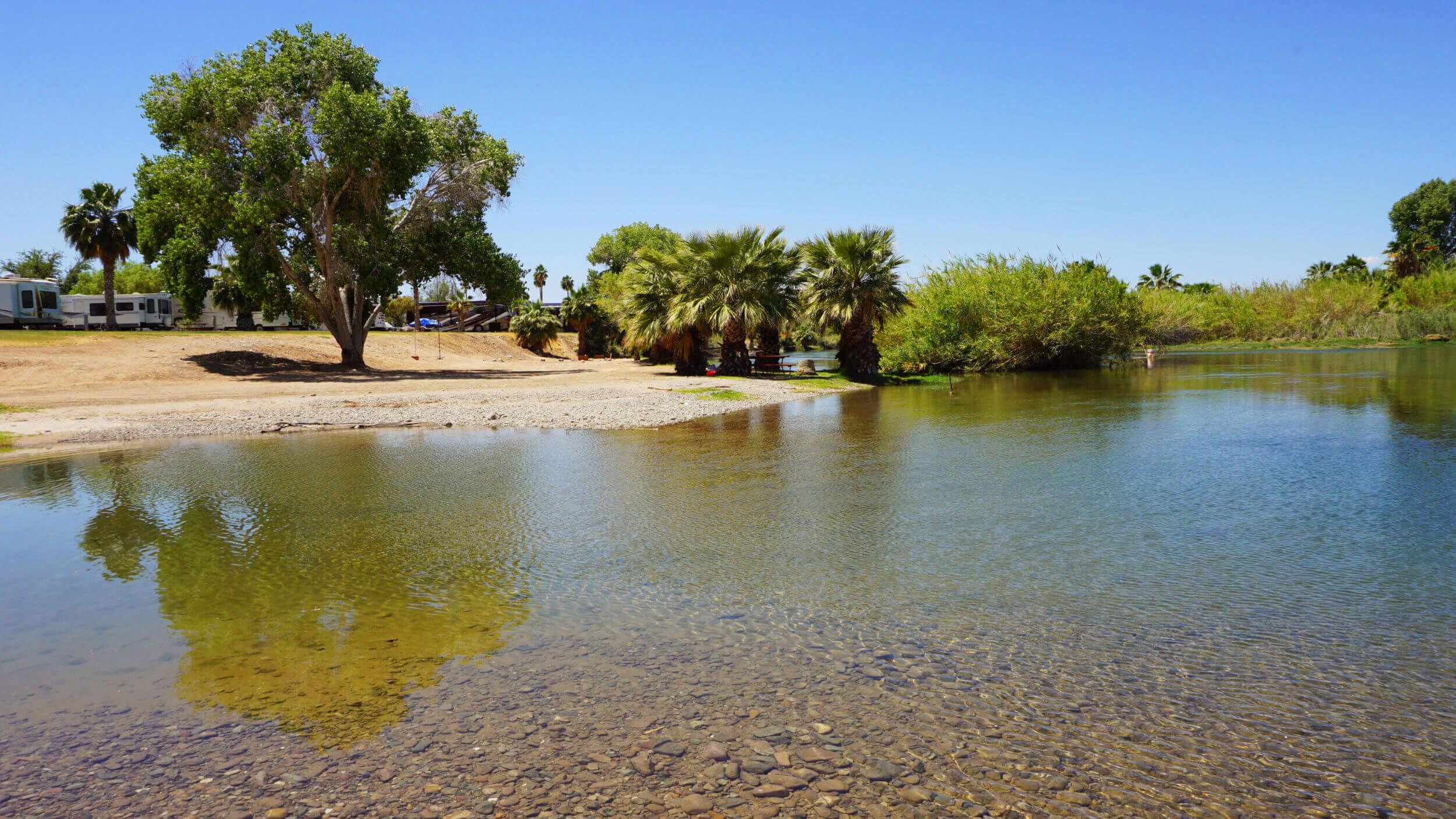 colorado-river-beach-arizona-oasis.jpg
