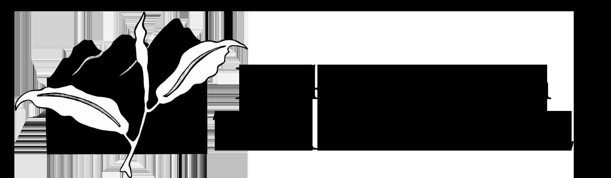 RMTF-Online-Logo-build-2018.png