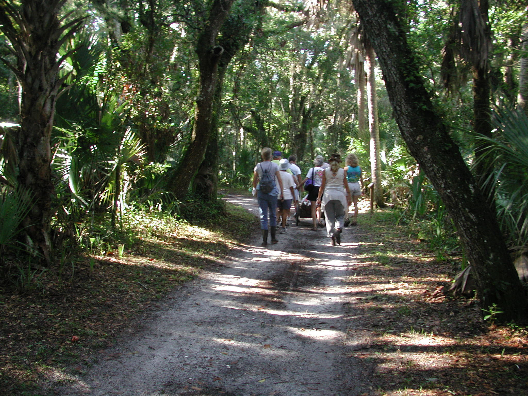 GTM Research Reserve - Local Activities Attraction - Nature Conservation - Family Fun - St. Augustine
