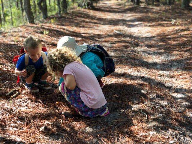 Flatwoods Forest School - Wilderness Wednesdays.JPG