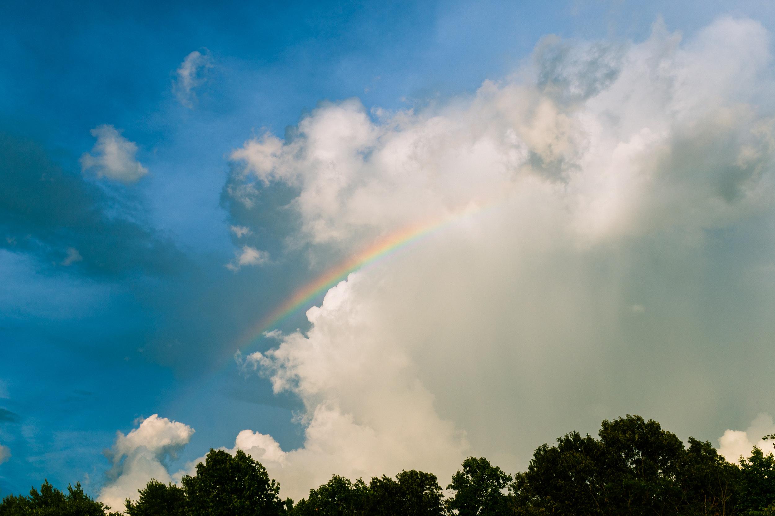 A rainbow of promise