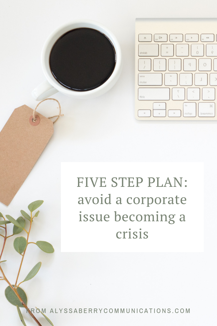 Alyssa Berry Communications - 5 Steps to Contain an Issue