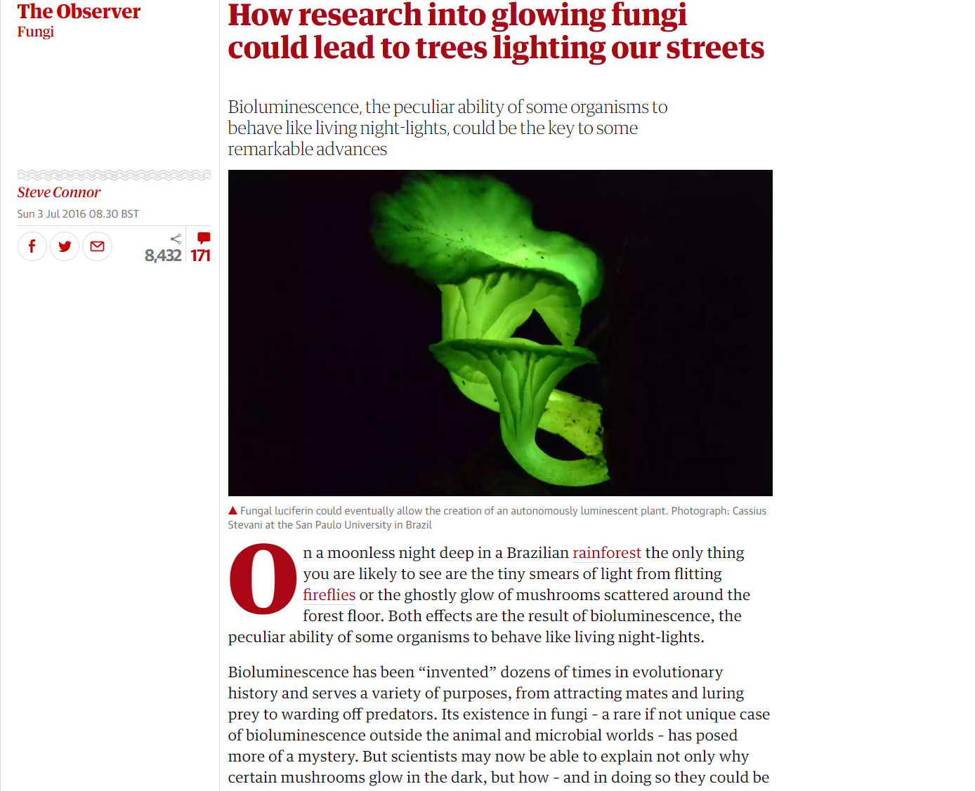 the guardian-fungi.png