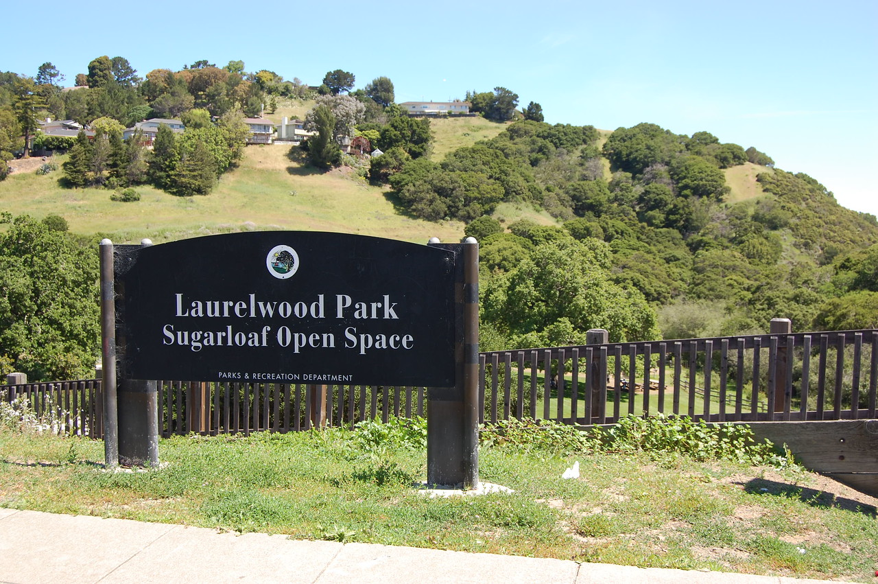 Sugarloaf - Laurelwood Park-X2.jpg