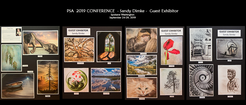 EXCITING NEWS:    I was selected as one of 3 Guest Exhibitors    at the 2019 Photographic Society of America (PSA) Conference in Spokane, WA