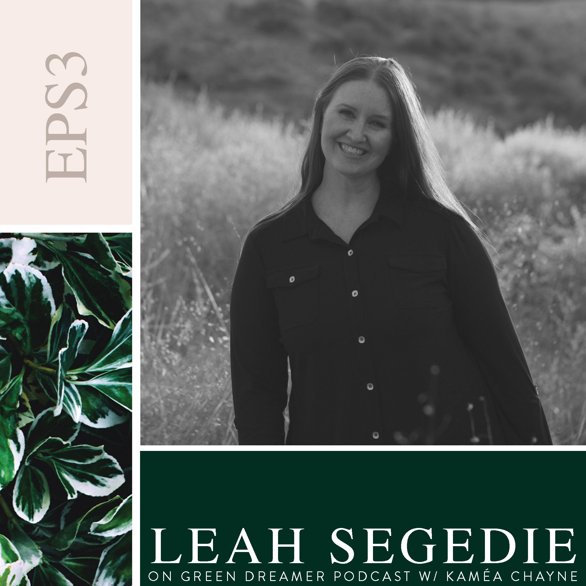 Leah Segedie on Sustainability via Green Dreamer Podcast with Kaméa Chayne