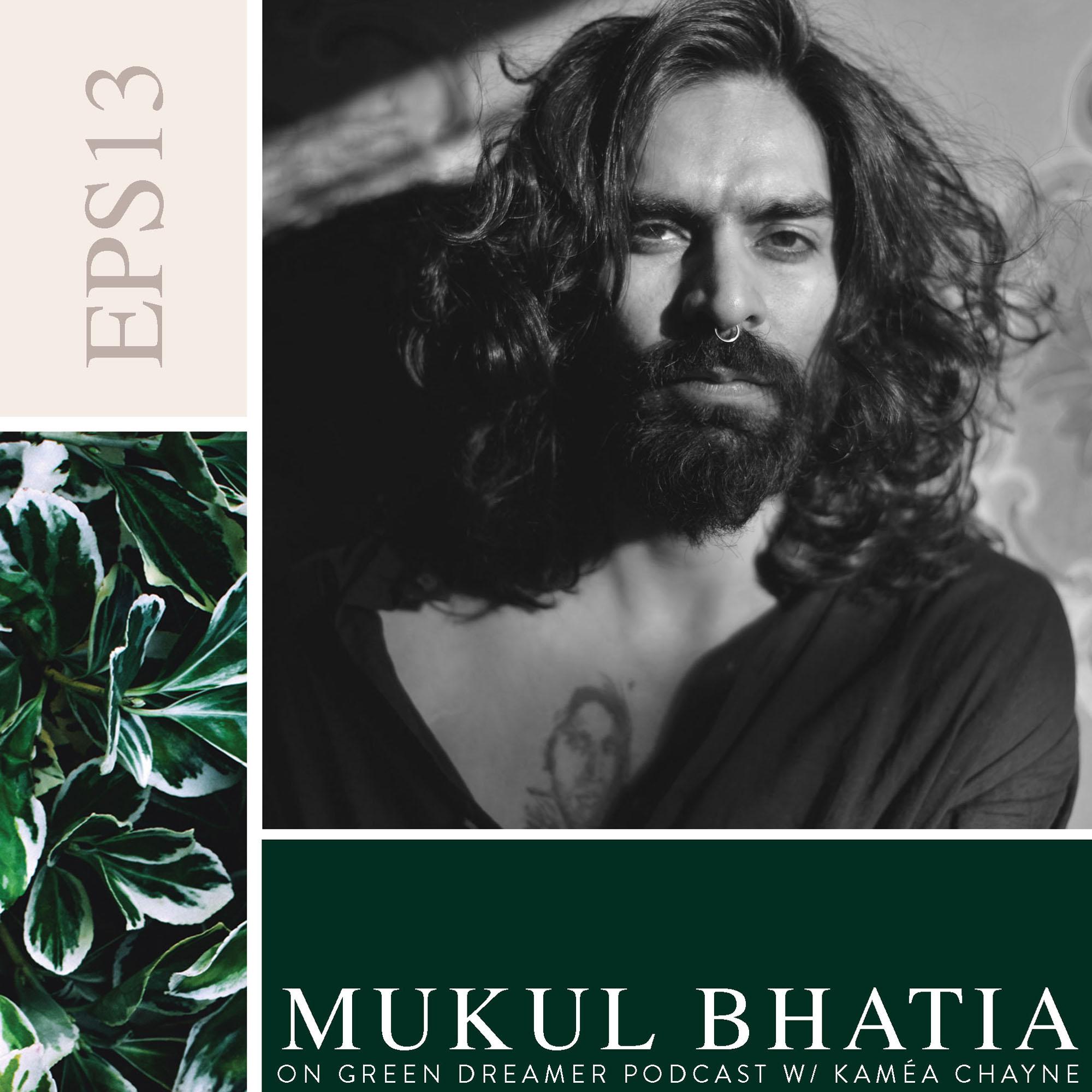 Mukul Bhatia on Sustainability via Green Dreamer Podcast with Kaméa Chayne