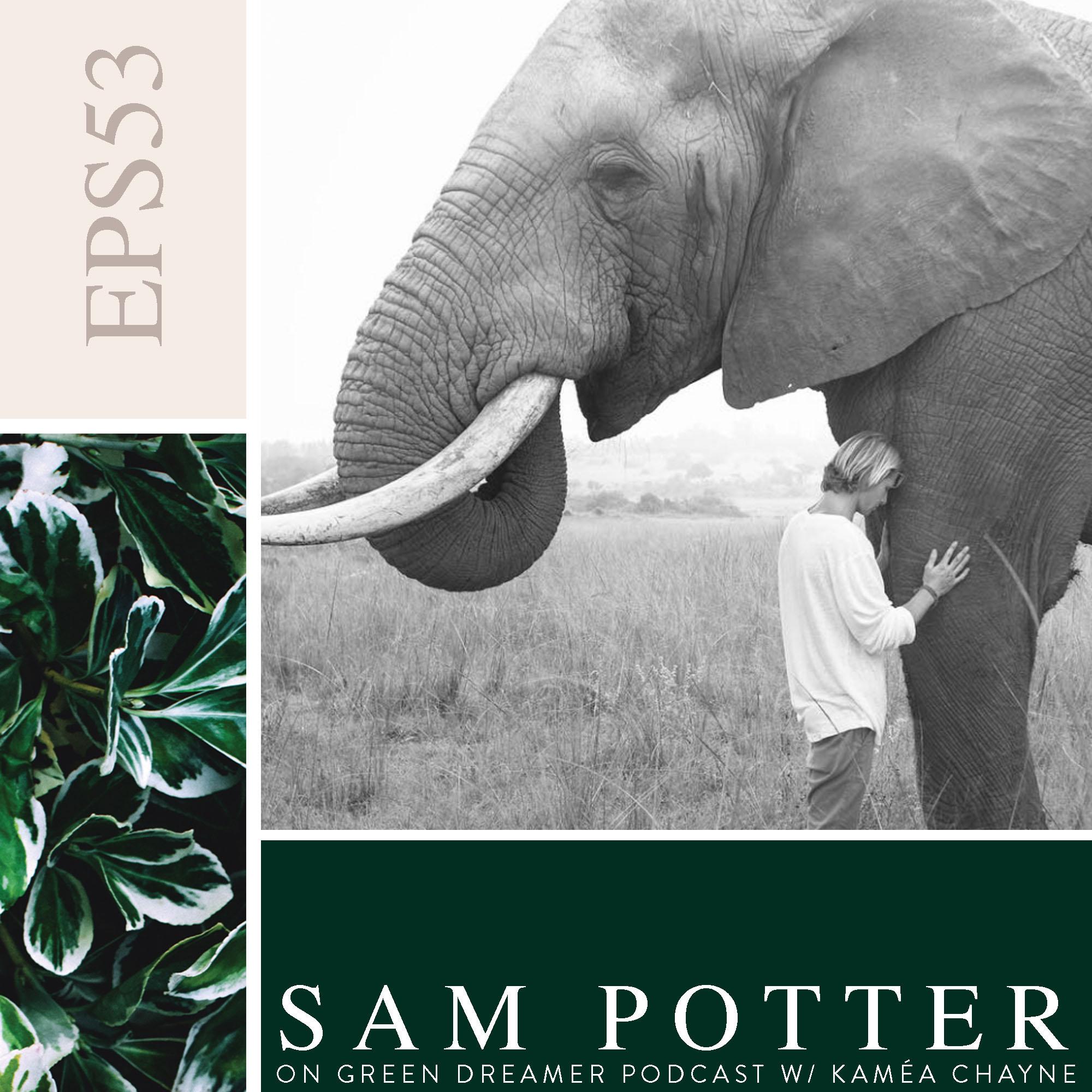 53) Sam Potter talking Sustainability on Green Dreamer Podcast with Kamea Chayne.jpg