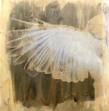 Uden titel, 1998, fotoemulsion og akryl på træ