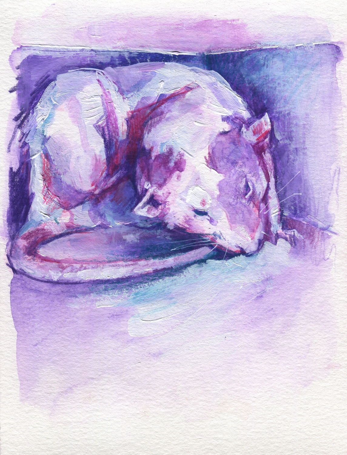 The100RatProject 005/100