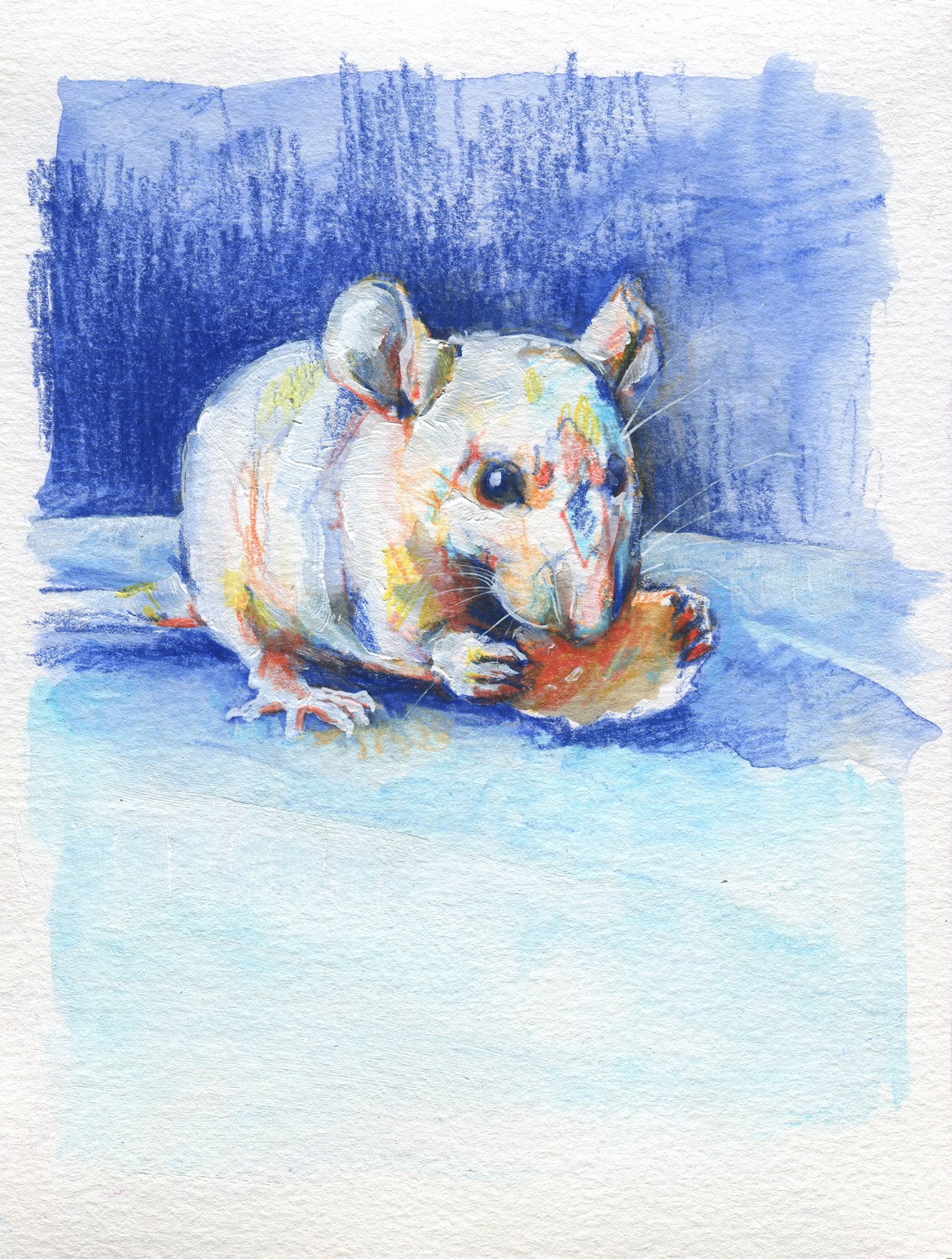 The100RatProject 014/100