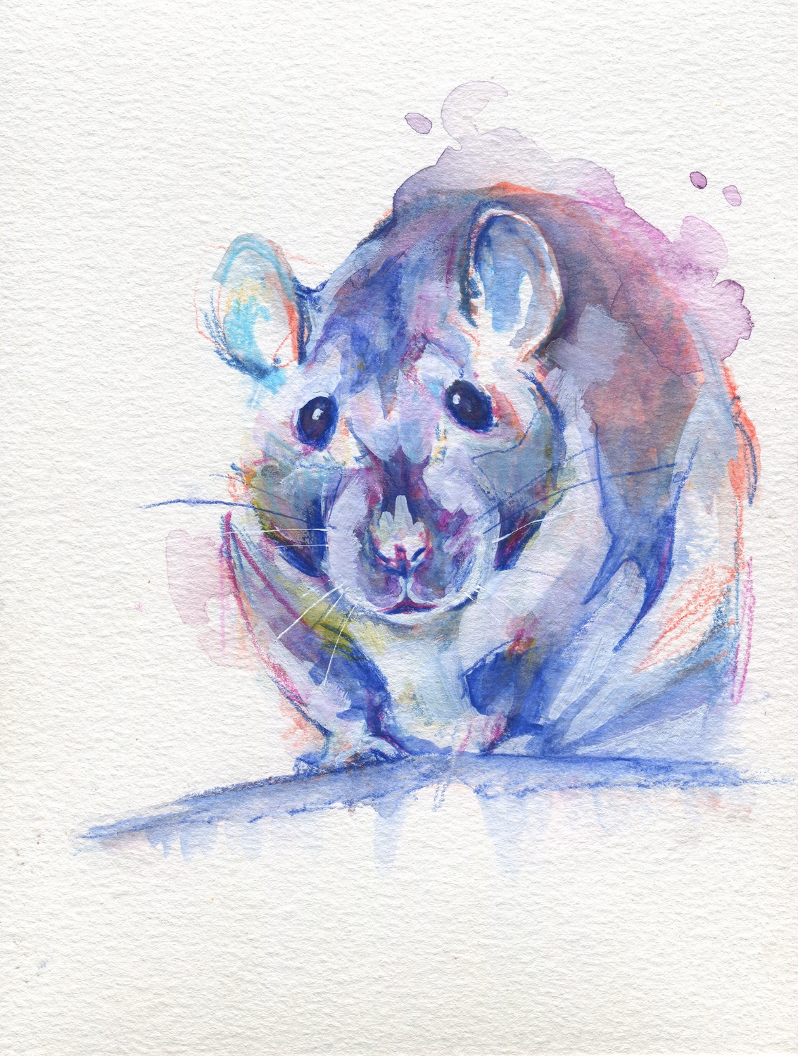 The100RatProject 026/100