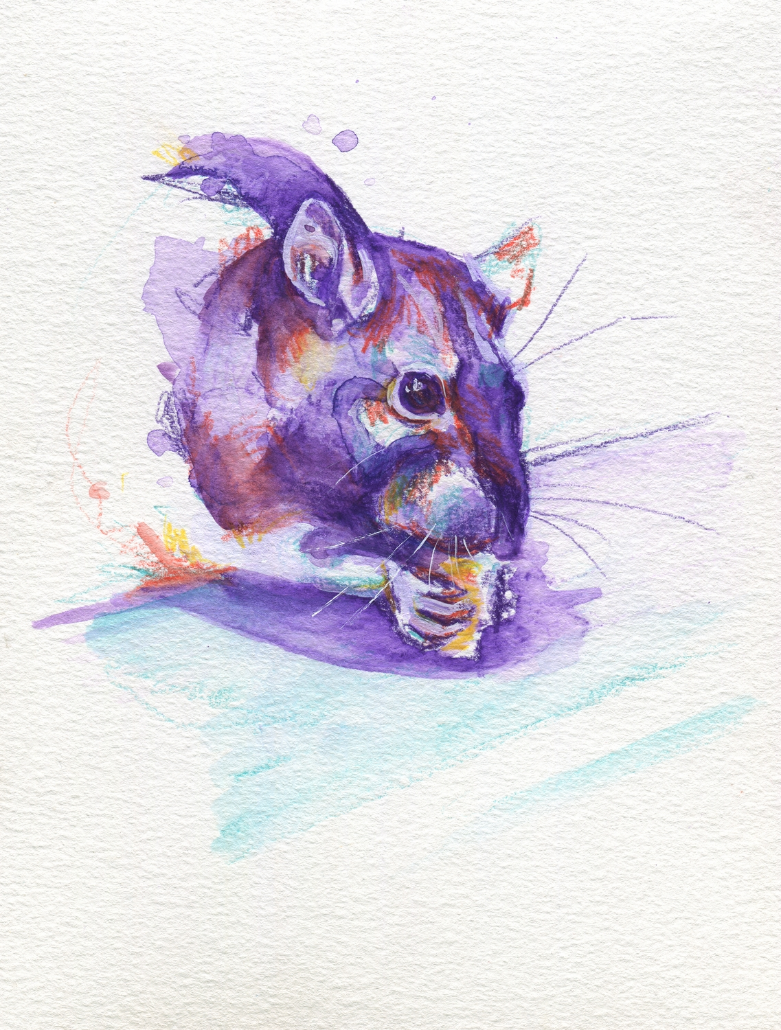 The100RatProject 027/100