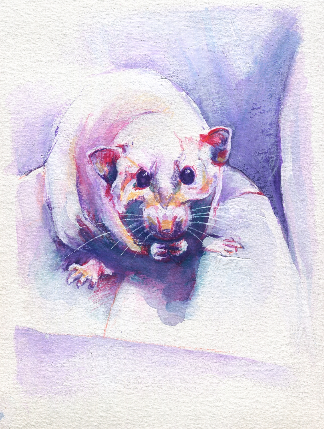 The100RatProject 045/100