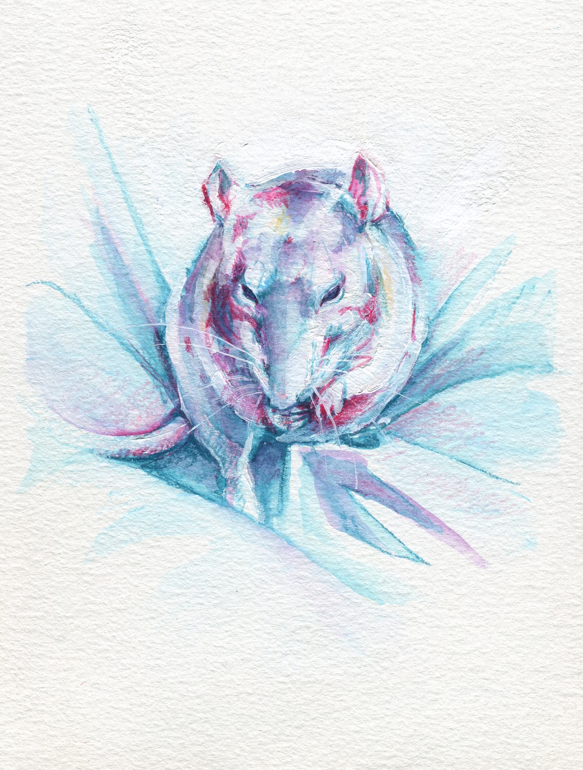 The100RatProject 049/100