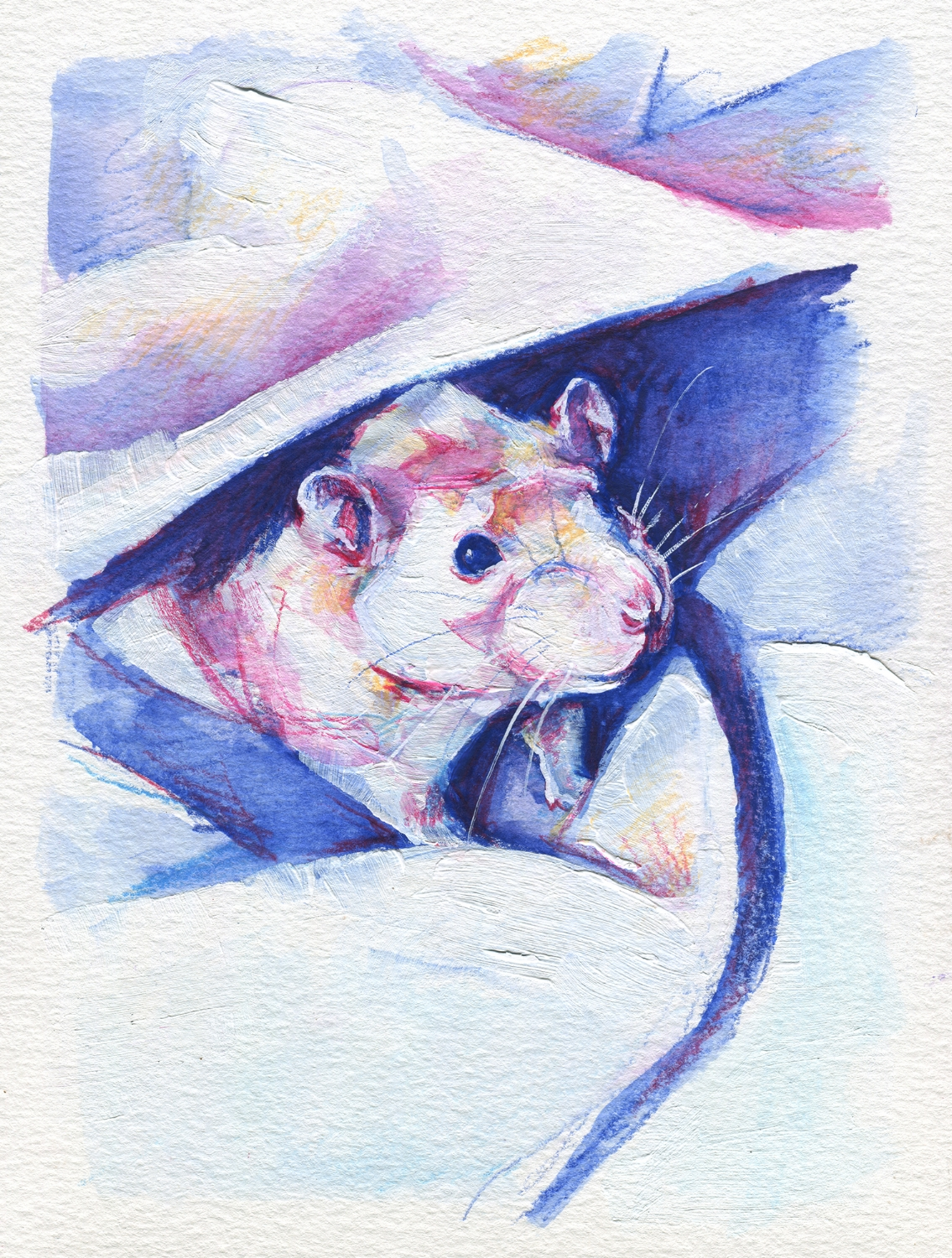 The100RatProject 060/100